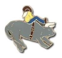Stock Pins - Western theme
